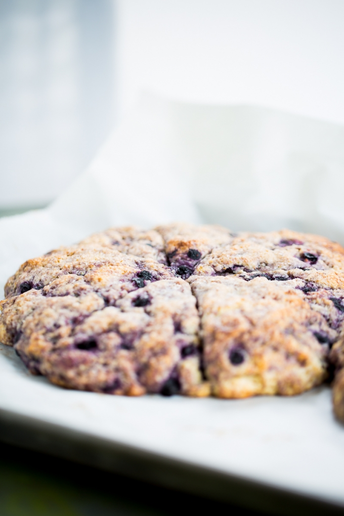 Vegan blueberry scones